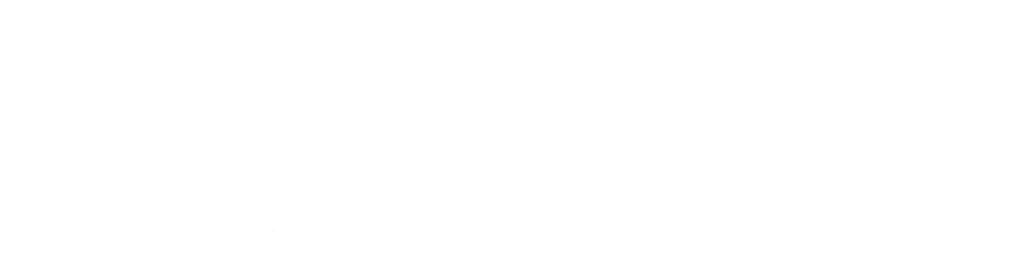 Women's Defense Network